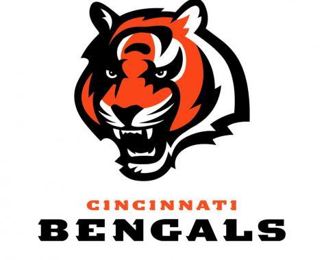 Cincinnati Bengals playing in NFL