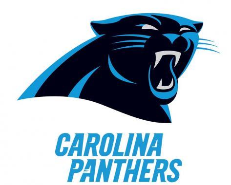 Carolina Panthers playing in NFL
