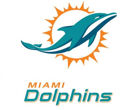 Miami Dolphins playing in NFL